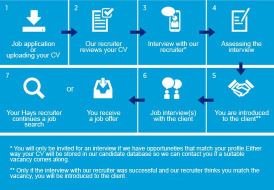 Job application process - Hays nl